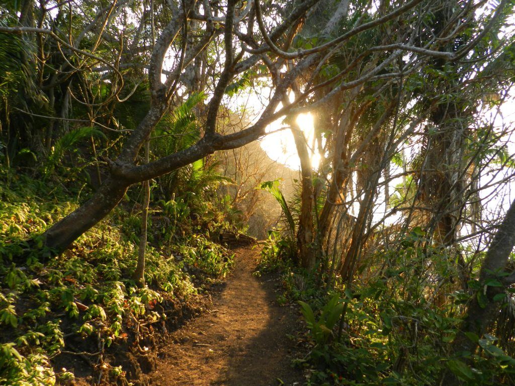 Mar al Cielo Eco-Retreat, trails, hiking, walking, walking trails, eco-tours, eco-adventure, accommodations, hotel, Lo de Marcos, Riviera Nayarit, Mexico, near Puerto Vallarta
