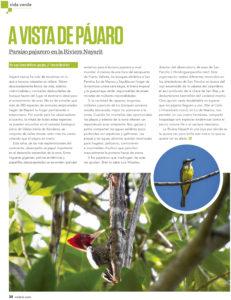 March 2018: Volaris, A Bird's Eye View